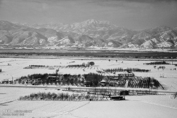 Fotoğraflarla İran'da kar yağışı
