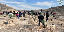 Sons, daughters of martyrs plant saplings in Damascus countryside