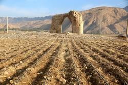 تراکتورها مشغول کارند/تاریخ در محاصره اراضی کشاورزی