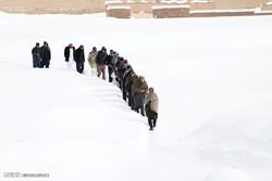 زمستان در کابل