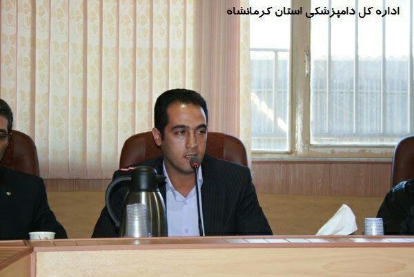 پلمب ۳۲ مرکز غیرمجاز عرضه مرغ زنده در کرمانشاه