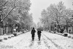 روز برفی در همدان