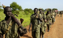 UNSC urges immediate end to current fighting across S Sudan