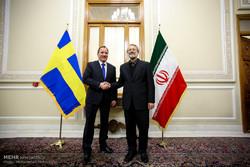 دیدار رئیس مجلس شورای اسلامی با نخست وزیر سوئد