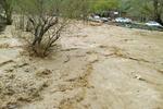 وضعیت هم اکنون رودخانه کرج