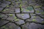 دسترسی به آب در خاورمیانه ۵۰ درصد محدود میشود