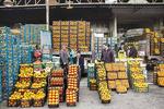 ۶۵۰ تن میوه شب عید در استان سمنان ذخیره شد