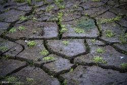 تداوم خشکسالی ۱۰ ساله در کشور/در تأمین آب برای کشاورزی مشکل داریم