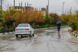 بارش شدید باران در استان بوشهر