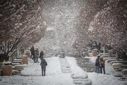 يوم مثلج في العاصمة طهران/صور