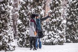 بارش شدید برف در البرز