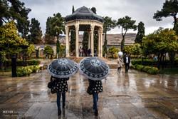 عصر يوم ماطر في مدينة شيراز /صور