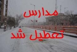 مدارس برخی نقاط استان بوشهر تعطیل شد