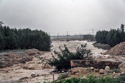سیلاب در فارس خودی نشان داد/ تخریب پل و سقوط در کانال آب