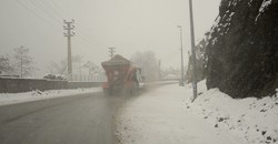 همه محورهای مواصلاتی استان زنجان مه آلود و لغزنده است/ترافیک سنگین در آزادراه ها