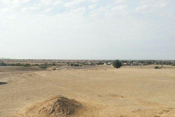 رفع تصرف ۳۴۲ هزار متر مربع اراضی دولتی در دشتی/ ۷ نفر دستگیر شدند