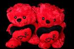 سرنوشت خرسهای بزرگ روز ولنتاین چیست؟