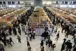 نمایشگاه بهاره پاکدشت با حضور ۵۰۰ غرفه فردا افتتاح می شود
