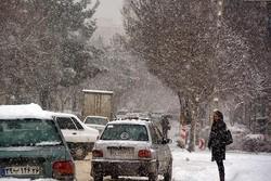 برف و یخبندان دانشگاههای اردبیل را به تعطیلی کشاند
