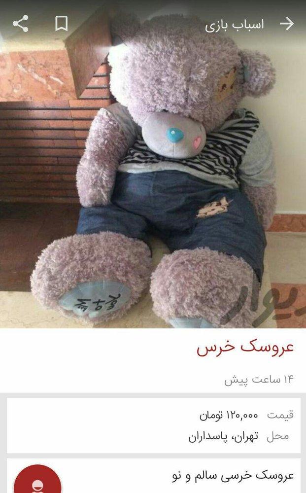 2379794 - سرنوشت غم انگیز خرسهای بزرگ روز ولنتاین !