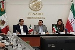 Mexico after medical coop. with Iran: Mexican Sen.