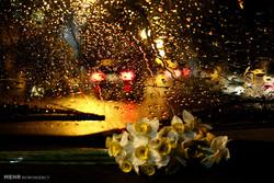 یک روز بارانی در شیراز