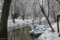 Heavy snowfall in Astara