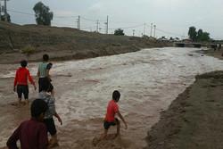 شهر کاکی دشتی در محاصره آب قرار گرفت/قطع آب ۲۵ روستا