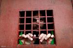 Hapisteki teröristlerin görüntüleri