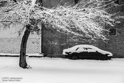 موسم سرما کے آخری ایام