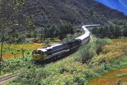 Rail exports