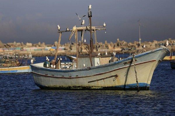 بحرية الكيان الصهيوني تعتقل خمسة صيادين في بحر قطاع غزة