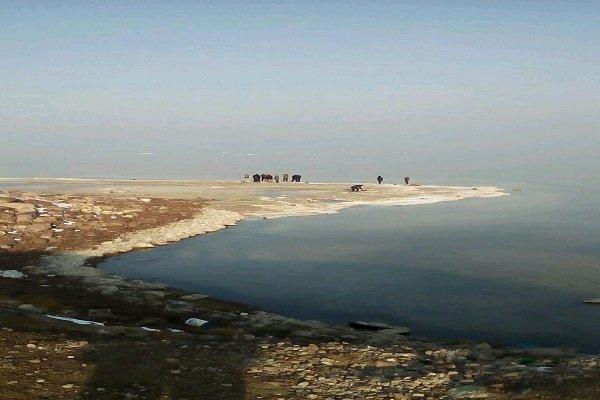 ۴۸۰ هکتار نهالکاری در اطراف دریاچه ارومیه