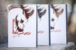 کتاب کارگردان سریال «آرام می گیریم» منتشر شد