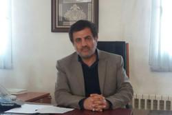 ساماندهی اتباع در ایران به دلیل وجود مرزهای گسترده زمان بر است