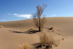 """ضيوف اجانب يتفقدون صحراء """"ام الدبس"""" بمحافظة خوزستان جنوب غرب ايران"""