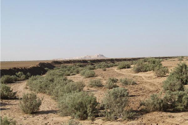 هفت میلیارد تومان برای طرح بیابان زدایی در قزوین هزینه می شود