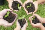 درختکاری در آیین ما/ حفاظت از محیط زیست یک وظیفه دینی-انسانی است