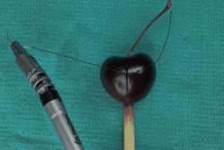 فیلم/ ابزار جراحی ارزان با دقت روبات