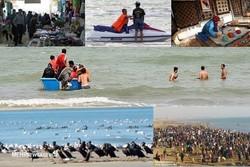 گردشگری ساحل گناوه