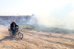 توضیحات شرکت نیشکر خوزستان در مورد سخنان نماینده اهواز