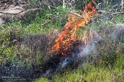 آتش زدن کاه و کلش مزارع یک سال زندان دارد