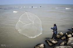 خبز البحر قوت صيادي مازندران في انتظار الربيع /صور