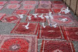تنظيف البيوت الايرانية طقس تحضيري لعيد النيروز /صور