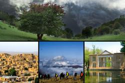 قدم زدن در جنگل ابروباد؛ گشتوگذار در «بهشت گمشده» کویر ایران