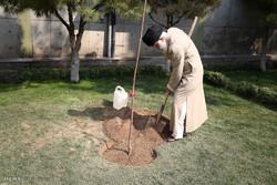 غرس دو اصله نهال میوه در هفته منابع طبیعی توسط مقام معظم رهبری