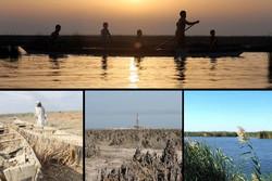 آبگیری هورالعظیم در غربال تردیدها/ خاموشی پرندگان میان دکلهای نفت