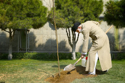 Leader of the Islamic Revolution Ayatollah Ali Khamenei is planting a sapling