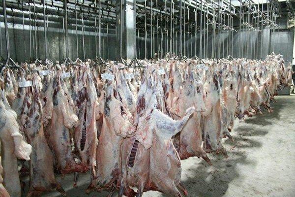 تأکید بر ساخت کشتارگاه های منطقه ای صنعتی و استاندارد در کرمان