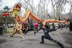 Chinese celebrate New Year along with Iranians